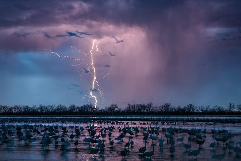 Una tempesta serale illumina il cielo vicino al fiume Wood, nel Nebraska, dove circa 413.000 gru di sandhill (una razza di uccelli) arrivano per dissetarsi nelle acque del fiume Platte -Foto di Randy Olson, Luglio 2016